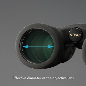 Consider Object Lens Diameter for Low Light Performance