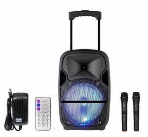 Qualimate 12 Inch Portable Karaoke