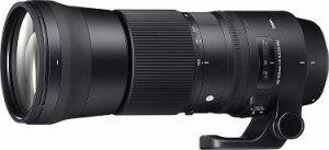 Sigma 150-600 mm lens